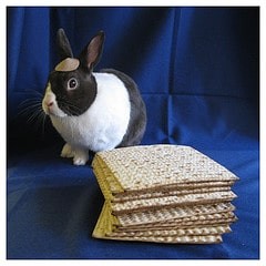 passover-and-easter