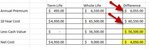 life insurance policy with cash value